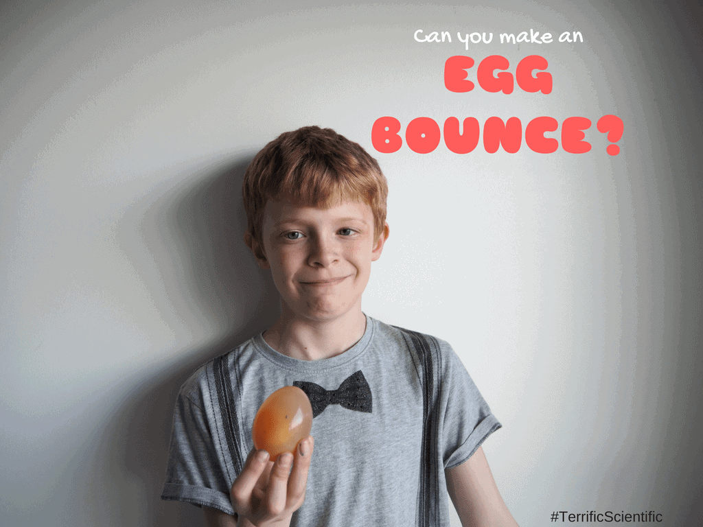 Can You Make An Egg Bounce? #TerrificScientific
