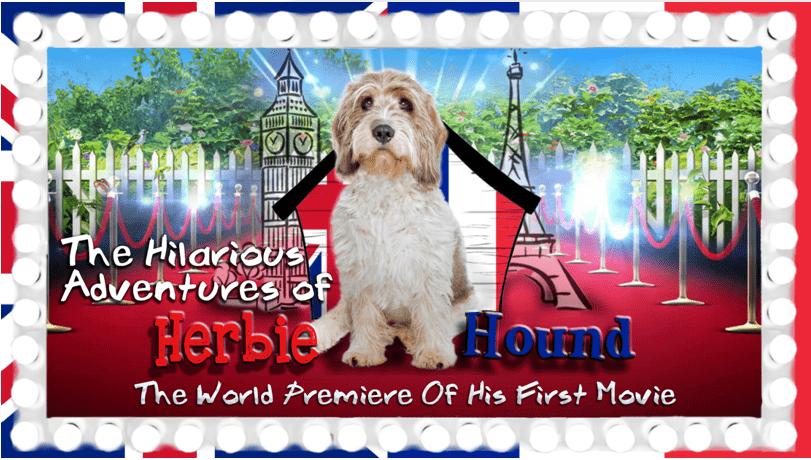 Herbie Hound