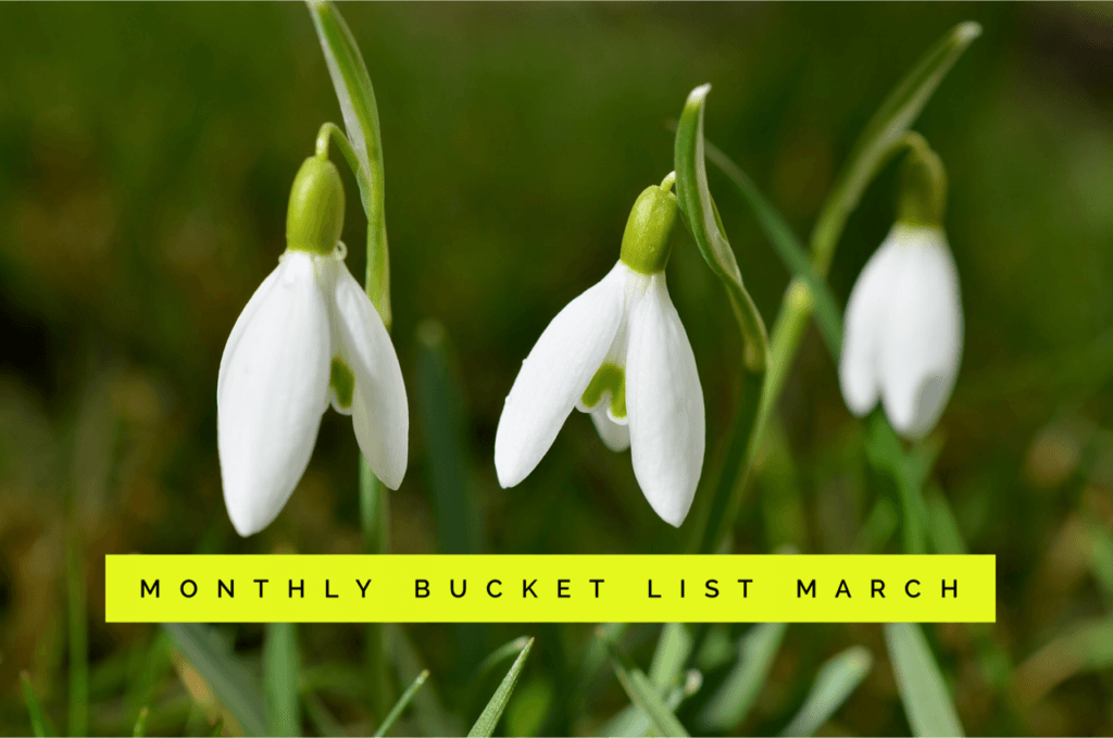 Monthly Bucket List – March