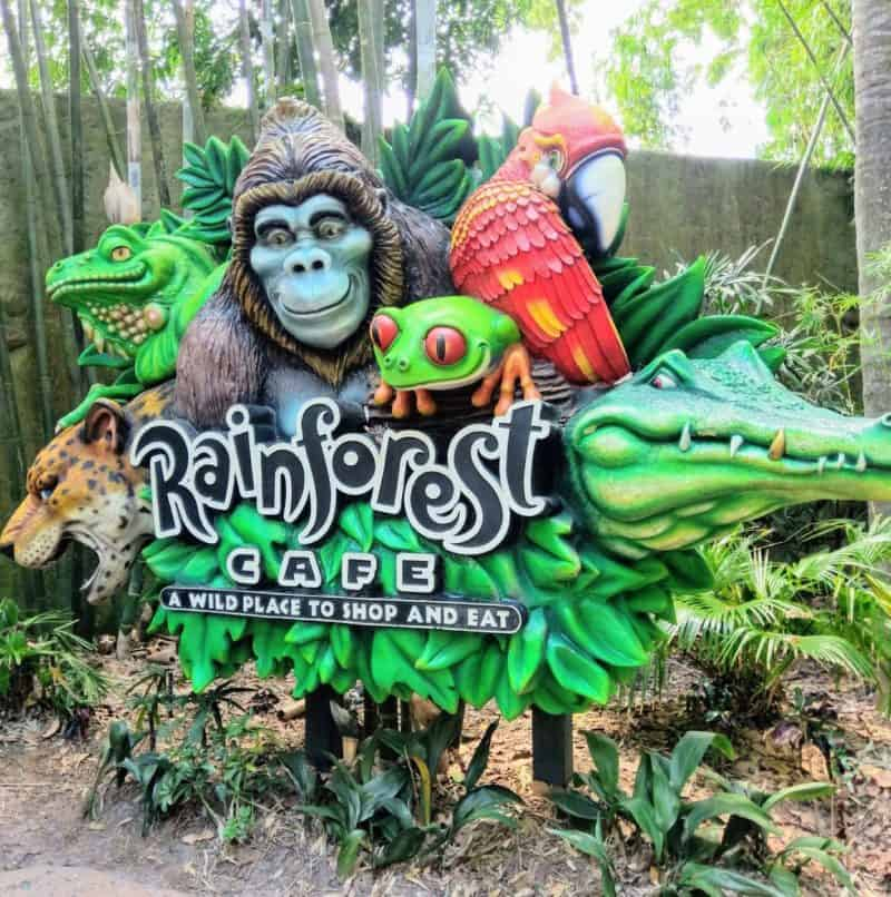 The Rainforest Cafe at Disney's Animal Kingdom