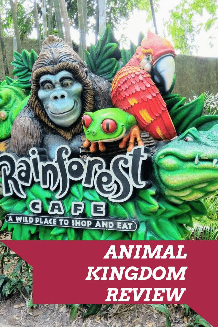 The Rainforest Cafe at Disney's Animal Kingdom