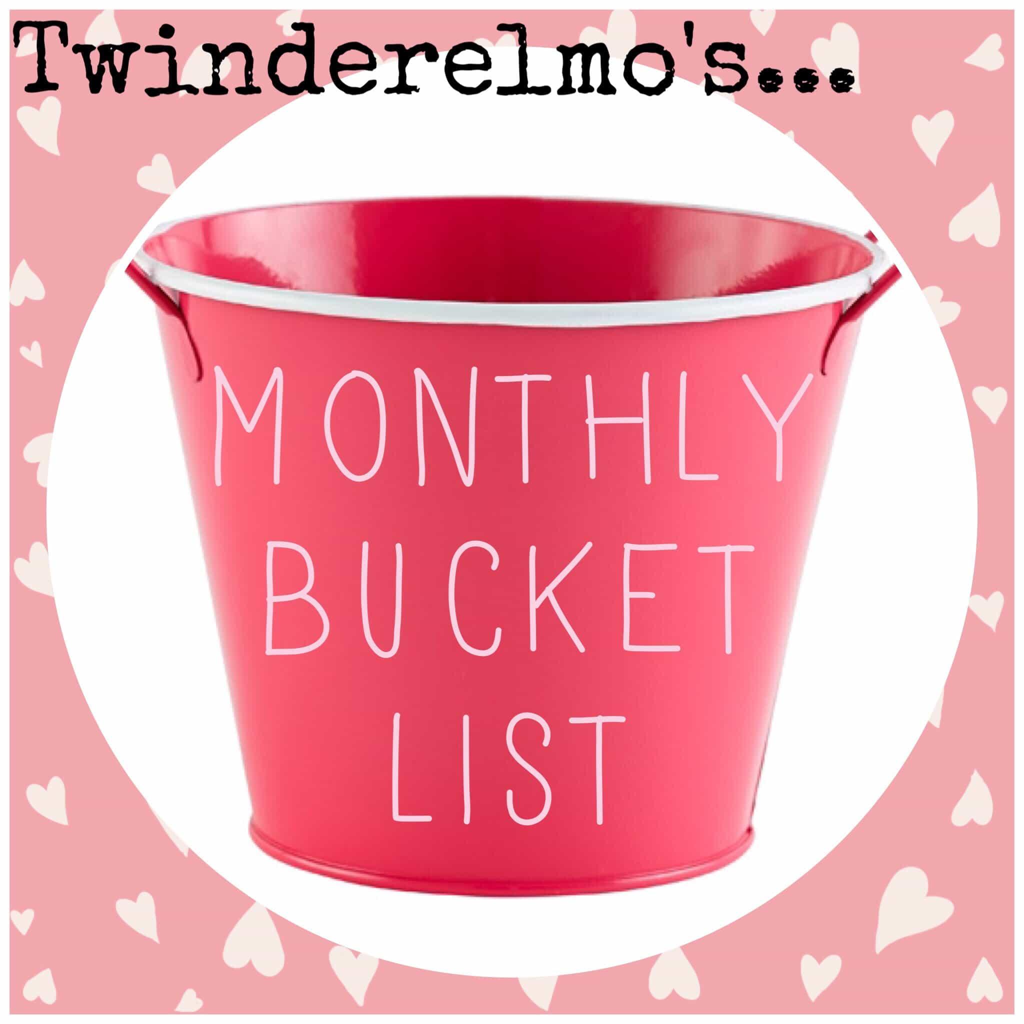 Monthly Bucket List Linky January Twinderelmo